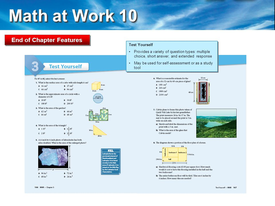 Math at Work 10 Math at Work 10 End of Chapter Features Test Yourself Provides a variety of question types: multiple choice, short answer, and extended response May be used for self-assessment or as a study tool Test Yourself Provides a variety of question types: multiple choice, short answer, and extended response May be used for self-assessment or as a study tool