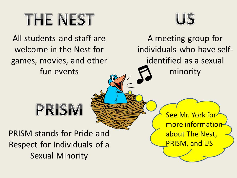 All students and staff are welcome in the Nest for games, movies, and other fun events PRISM stands for Pride and Respect for Individuals of a Sexual