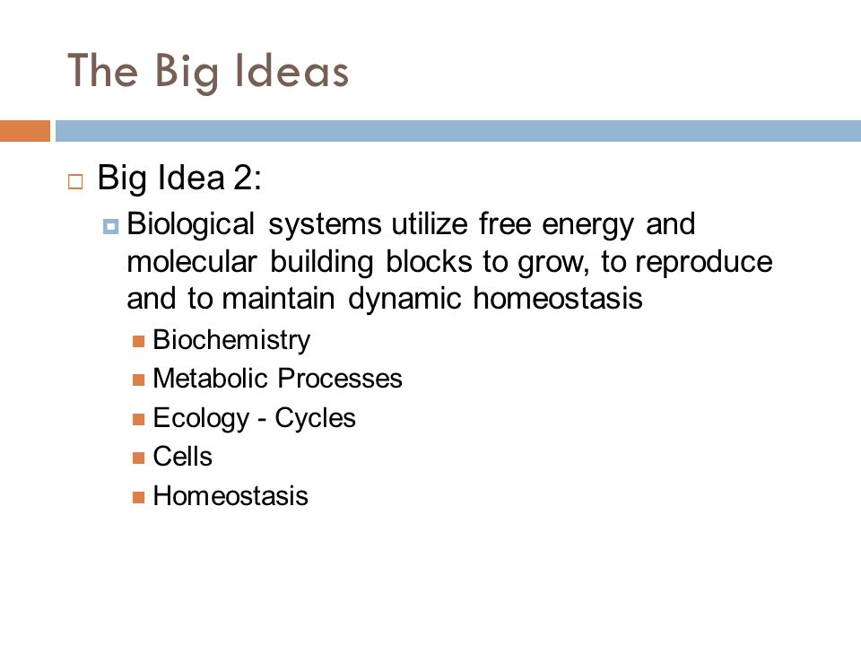 The Big Ideas  Big Idea 2:  Biological systems utilize free energy and molecular building blocks to grow, to reproduce and to maintain dynamic homeostasis Biochemistry Metabolic Processes Ecology - Cycles Cells Homeostasis
