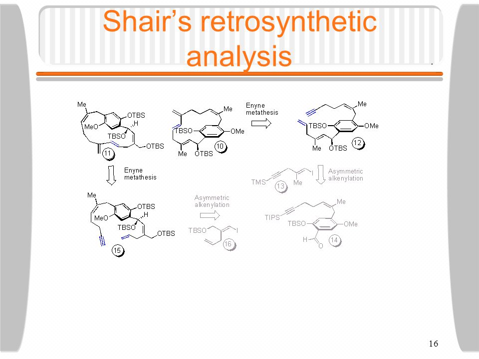 16 Shair's retrosynthetic analysis