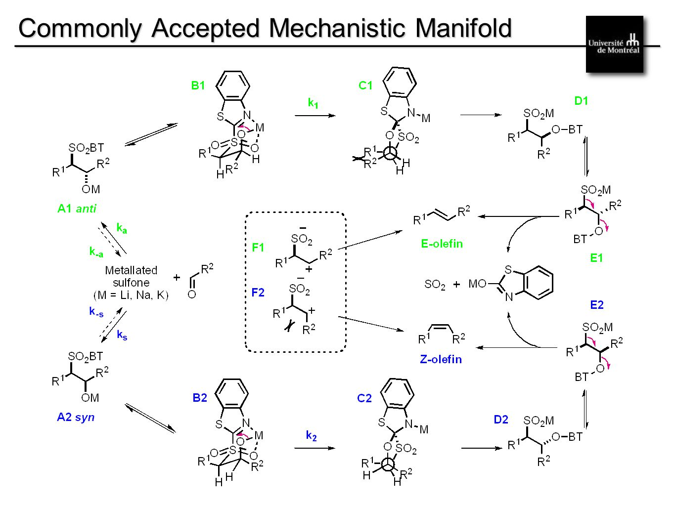 __________________________________________ Commonly Accepted Mechanistic Manifold