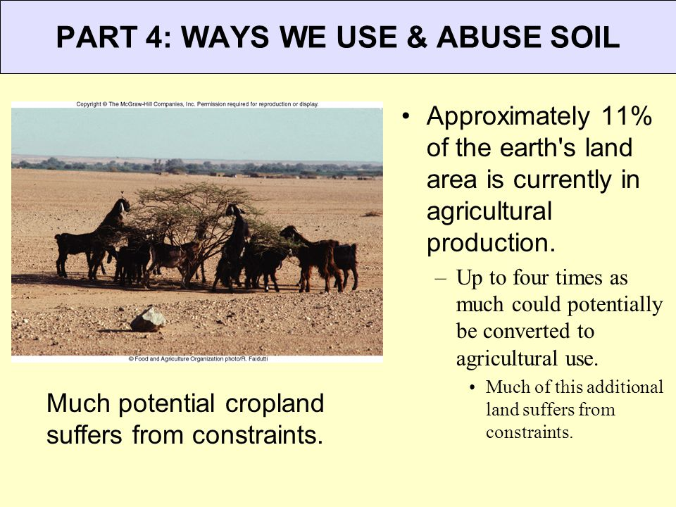 PART 4: WAYS WE USE & ABUSE SOIL Much potential cropland suffers from constraints. Approximately 11% of the earth's land area is currently in agricult