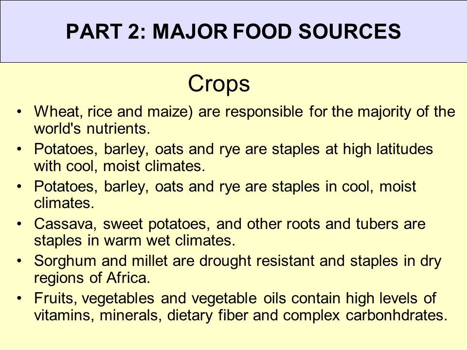 Annual Production of Important Foods Below - Rice plants (a type of grass or grain)