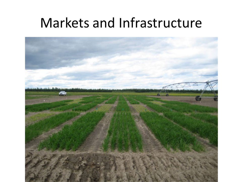 Markets and Infrastructure