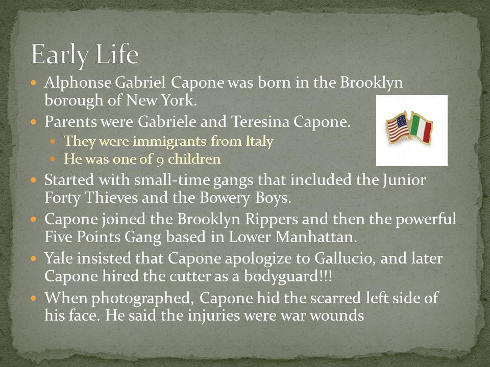 Alphonse Gabriel Capone was born in the Brooklyn borough of New York.