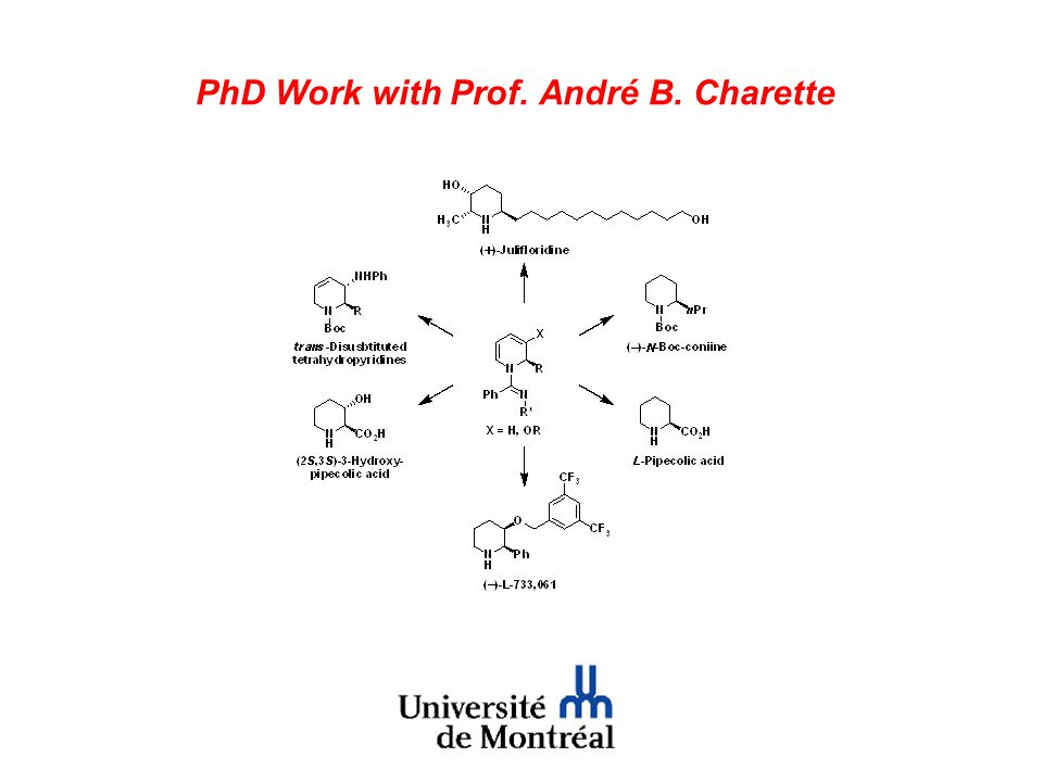 PhD Work with Prof. André B. Charette