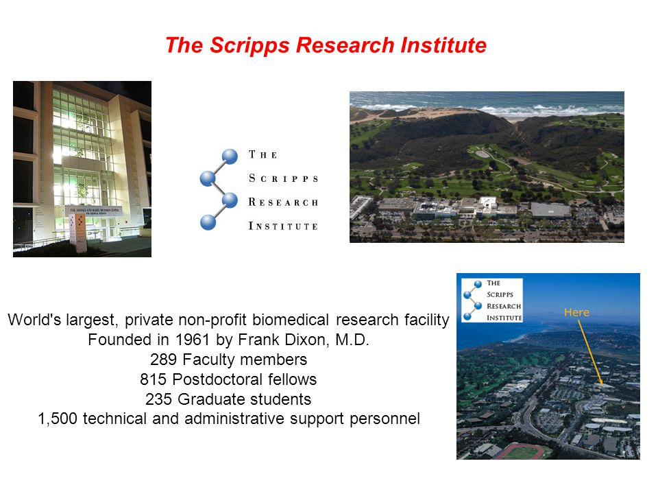The Scripps Research Institute K.C. Nicolaou - Chairman of chemistry dept.