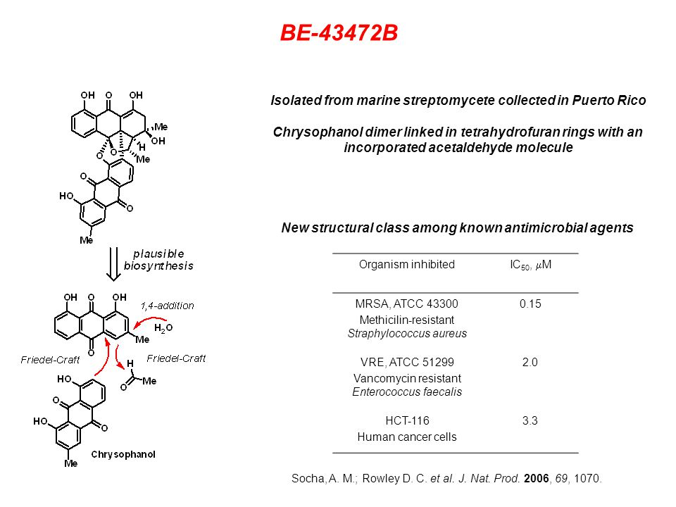 BE-43472B Organism inhibited IC 50,  M MRSA, ATCC Methicilin-resistant Straphylococcus aureus 0.15 VRE, ATCC Vancomycin resistant Enterococcus faecalis 2.0 HCT-116 Human cancer cells 3.3 New structural class among known antimicrobial agents Isolated from marine streptomycete collected in Puerto Rico Chrysophanol dimer linked in tetrahydrofuran rings with an incorporated acetaldehyde molecule Socha, A.