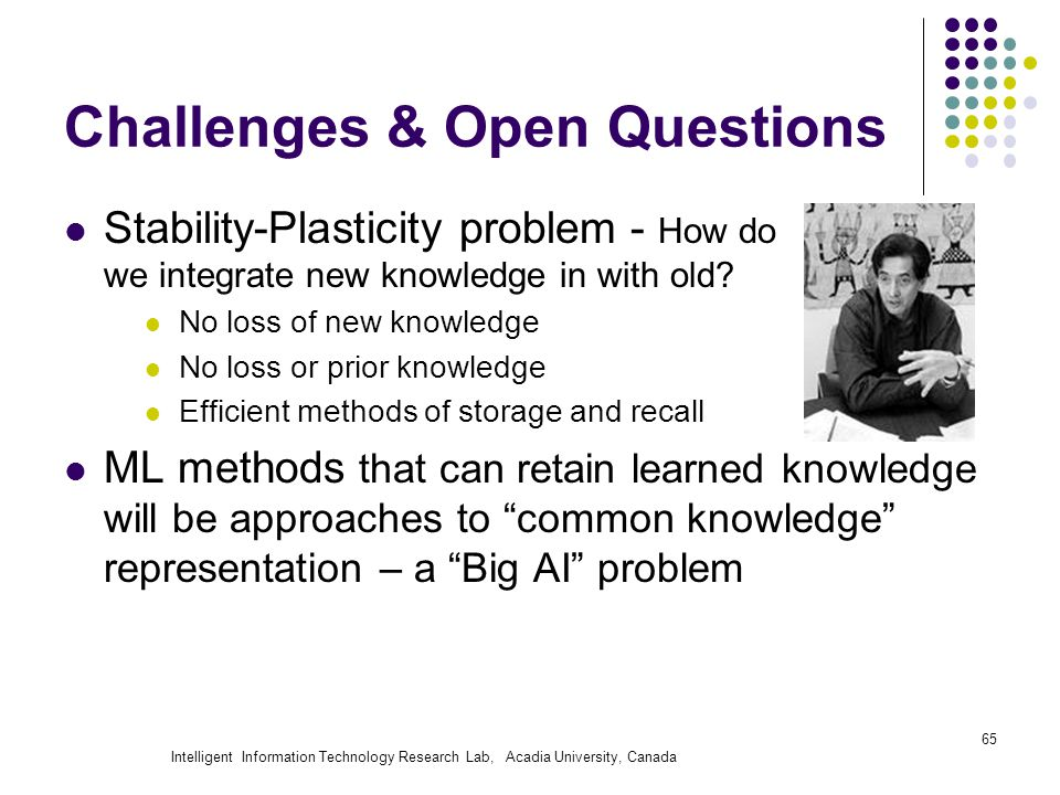 Intelligent Information Technology Research Lab, Acadia University, Canada Challenges & Open Questions Stability-Plasticity problem - How do we integrate new knowledge in with old.