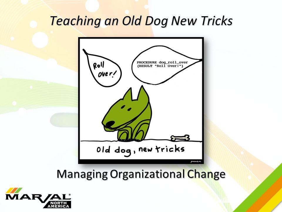 Teaching an Old Dog New Tricks Managing Organizational Change