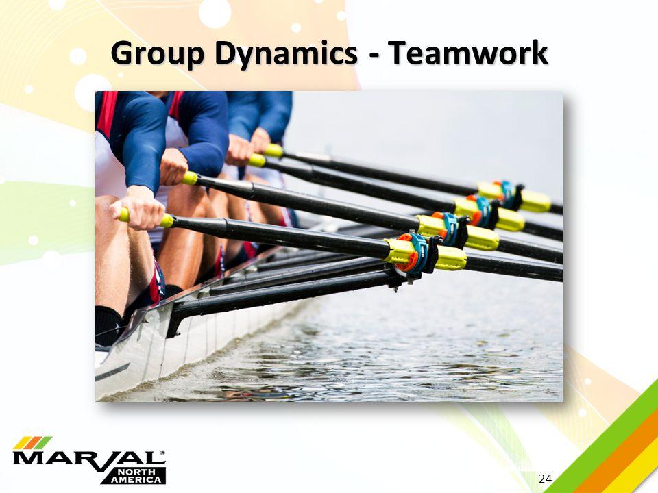 24 Group Dynamics - Teamwork
