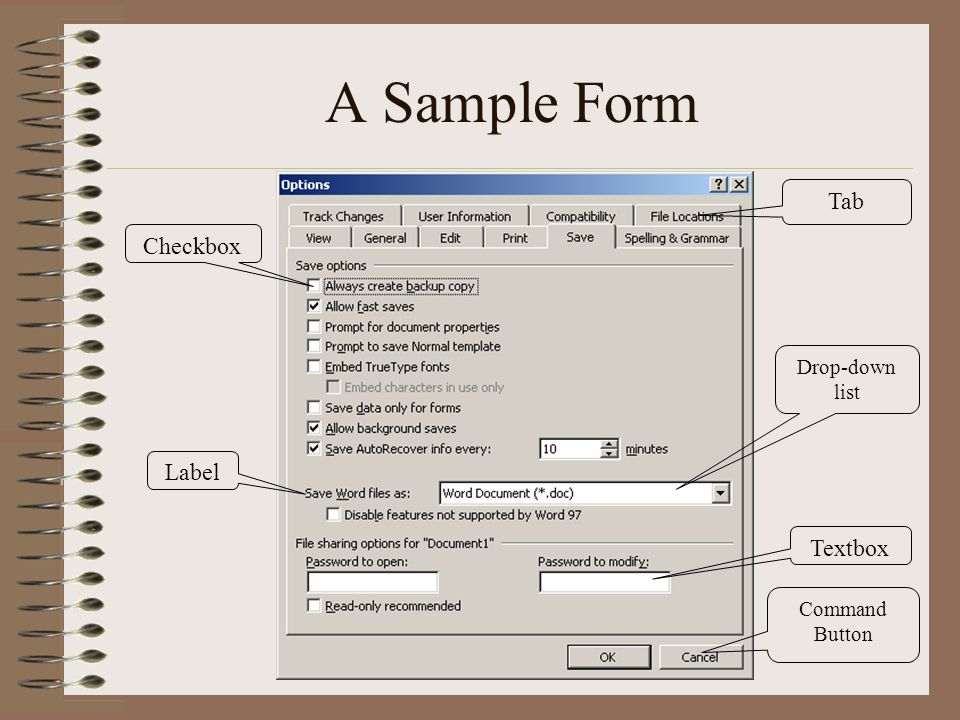 A Sample Form Tab Checkbox Textbox Command Button Drop-down list Label