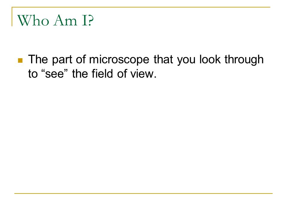 Who Am I? The parts of the microscope shown below. A B