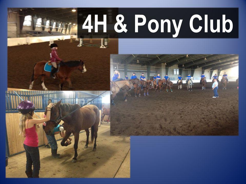 4H & Pony Club