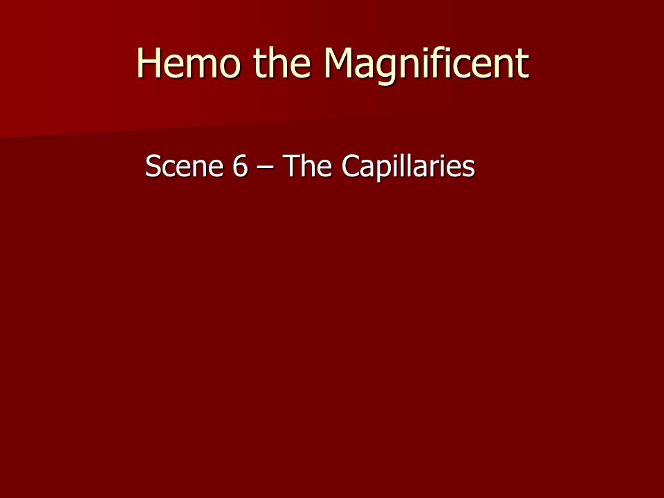 Hemo the Magnificent Scene 6 – The Capillaries