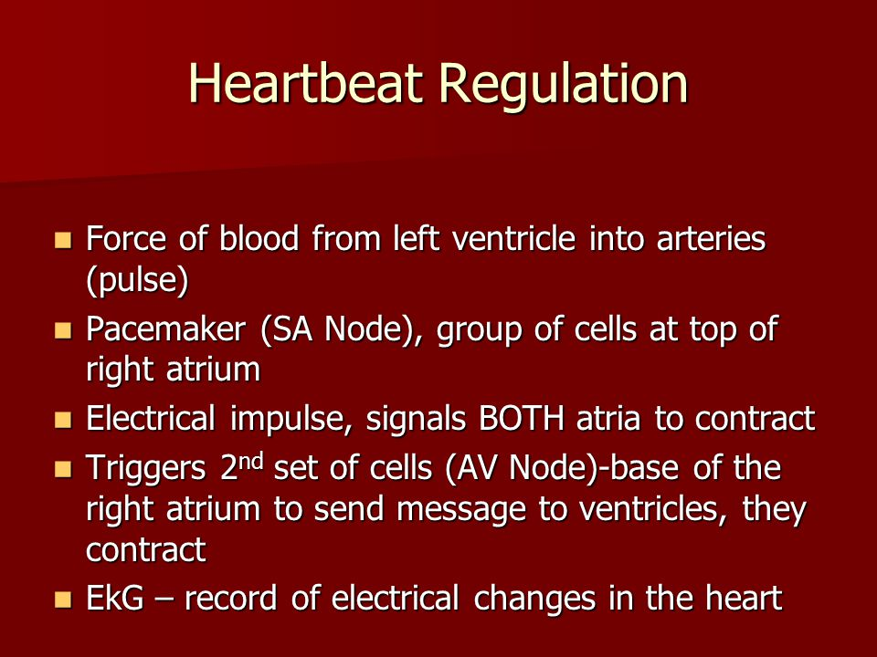 Control of the Heart (Nervous System) Medulla oblongata regulates rate Medulla oblongata regulates rate Sensory cells stretch when too fast Sensory ce