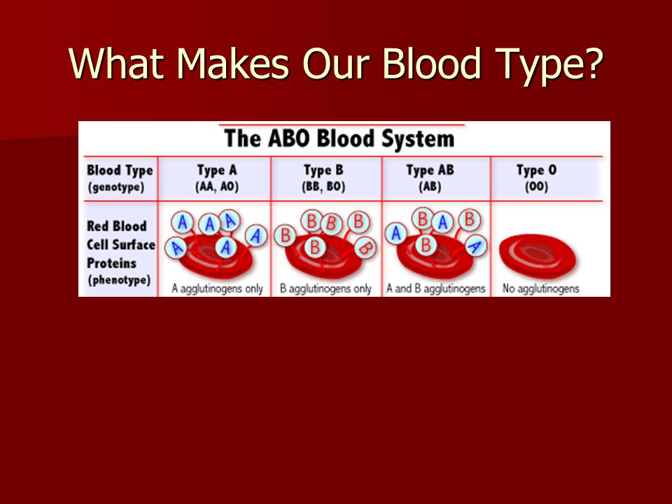 What happens when you mix blood types? Plasma contains proteins that correspond to the shape of the different antigens Plasma contains proteins that c