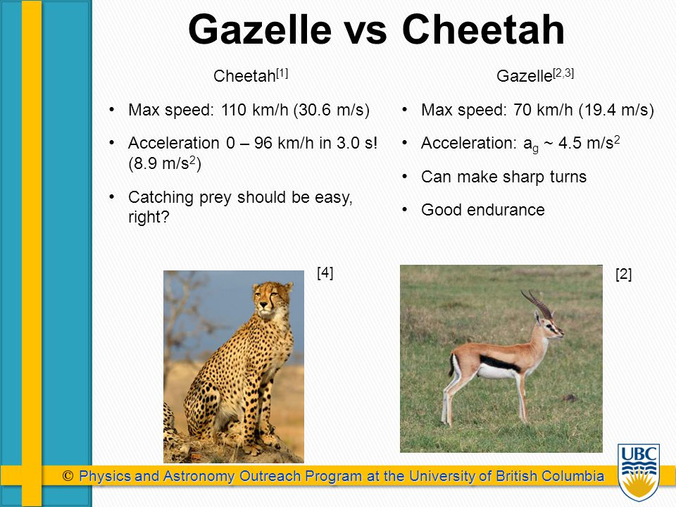 Physics and Astronomy Outreach Program at the University of British Columbia Physics and Astronomy Outreach Program at the University of British Columbia Gazelle vs Cheetah [4] [2] Cheetah [1] Max speed: 110 km/h (30.6 m/s) Acceleration 0 – 96 km/h in 3.0 s.