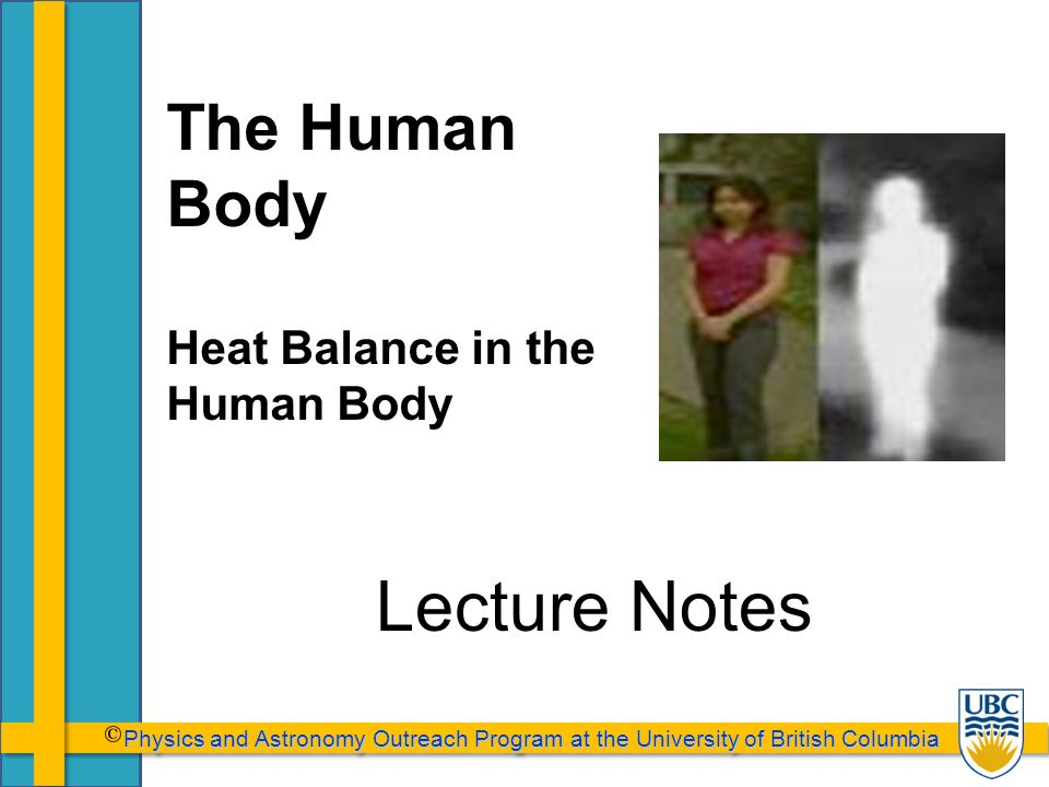 Physics and Astronomy Outreach Program at the University of British Columbia Physics and Astronomy Outreach Program at the University of British Columbia Lecture Notes The Human Body Heat Balance in the Human Body