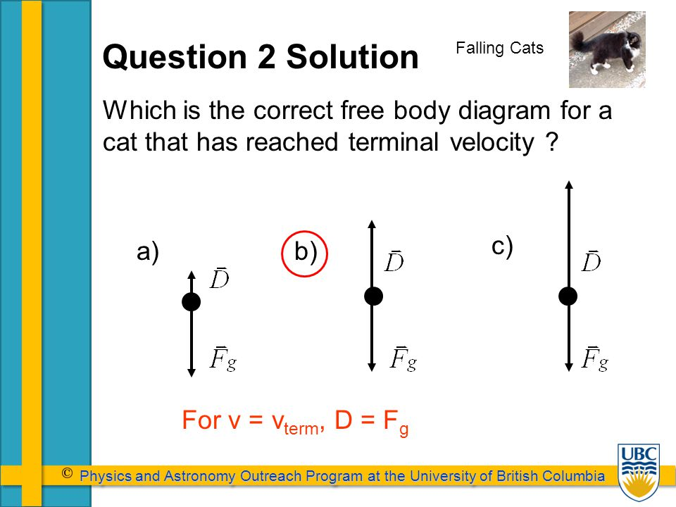 Physics and Astronomy Outreach Program at the University of British Columbia Physics and Astronomy Outreach Program at the University of British Columbia Falling Cats b)a) c) For v = v term, D = F g Question 2 Solution Which is the correct free body diagram for a cat that has reached terminal velocity