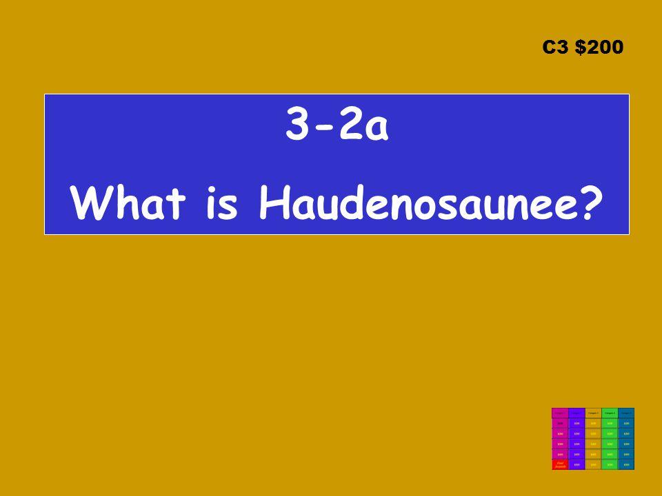 C3 $200 3-2a What is Haudenosaunee?