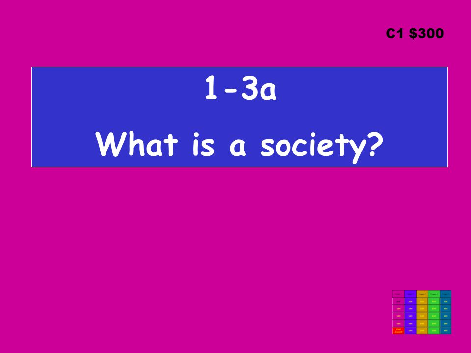 1-3a What is a society C1 $300