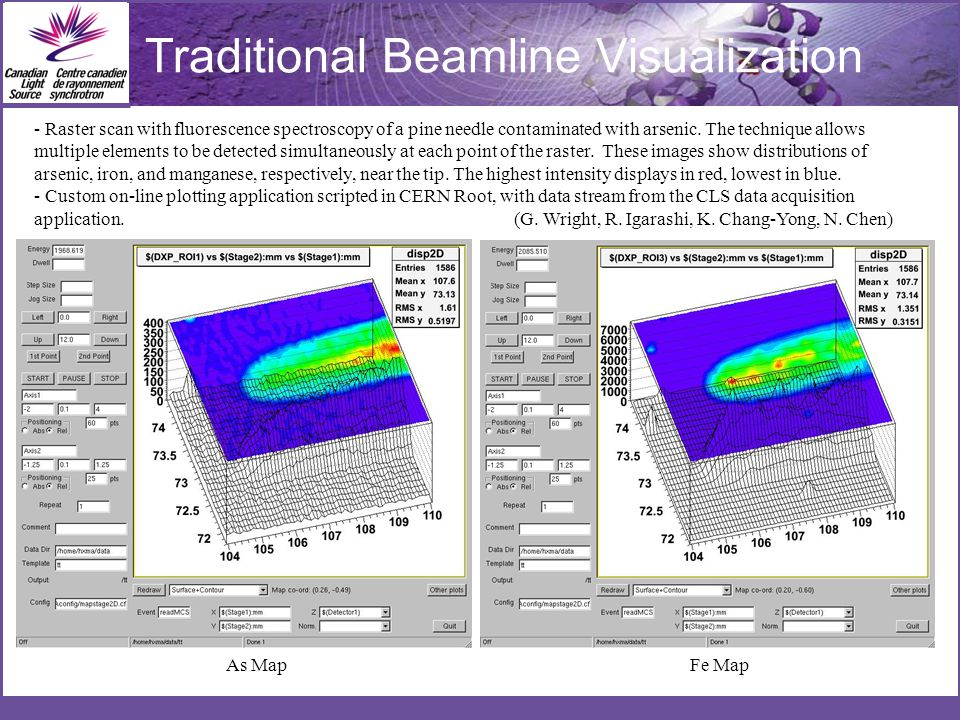 Traditional Beamline Visualization As Map - Raster scan with fluorescence spectroscopy of a pine needle contaminated with arsenic.
