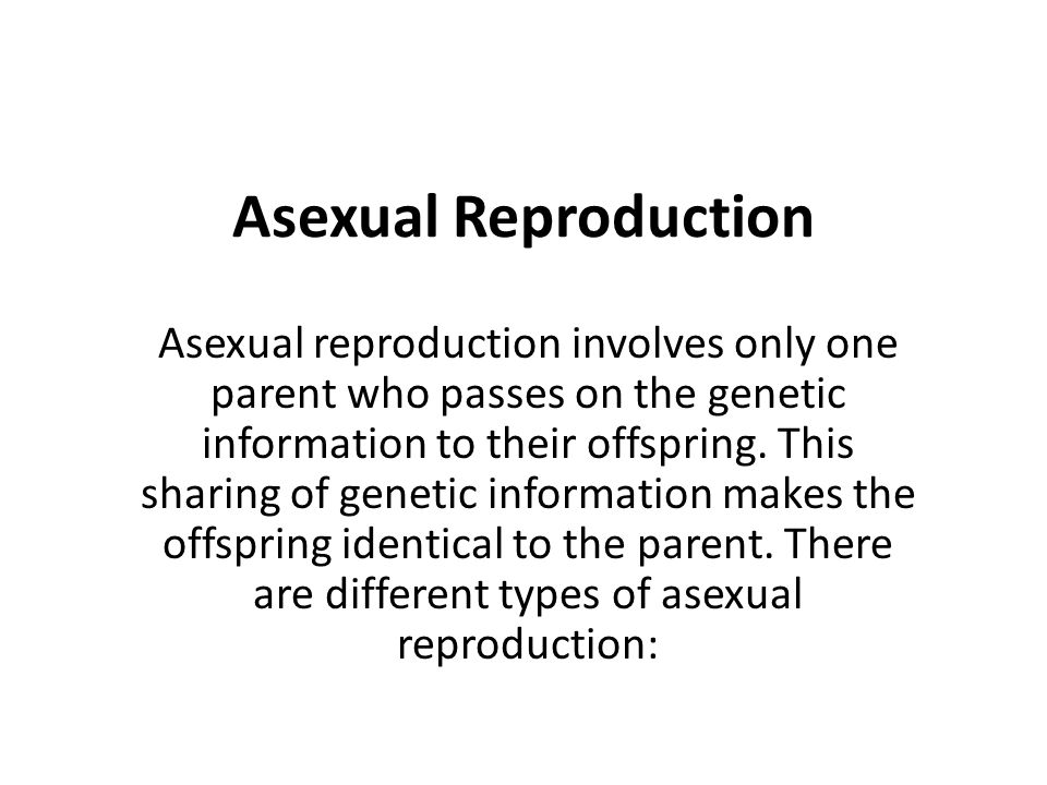 Asexual Reproduction Asexual reproduction involves only one parent who passes on the genetic information to their offspring. This sharing of genetic i