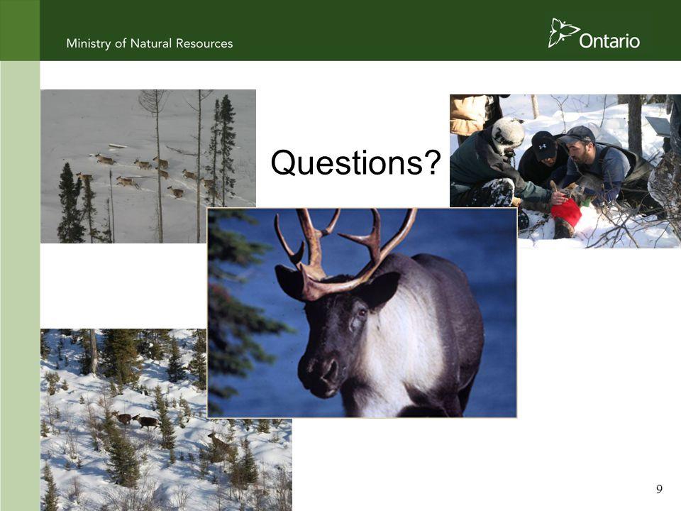 9 Questions