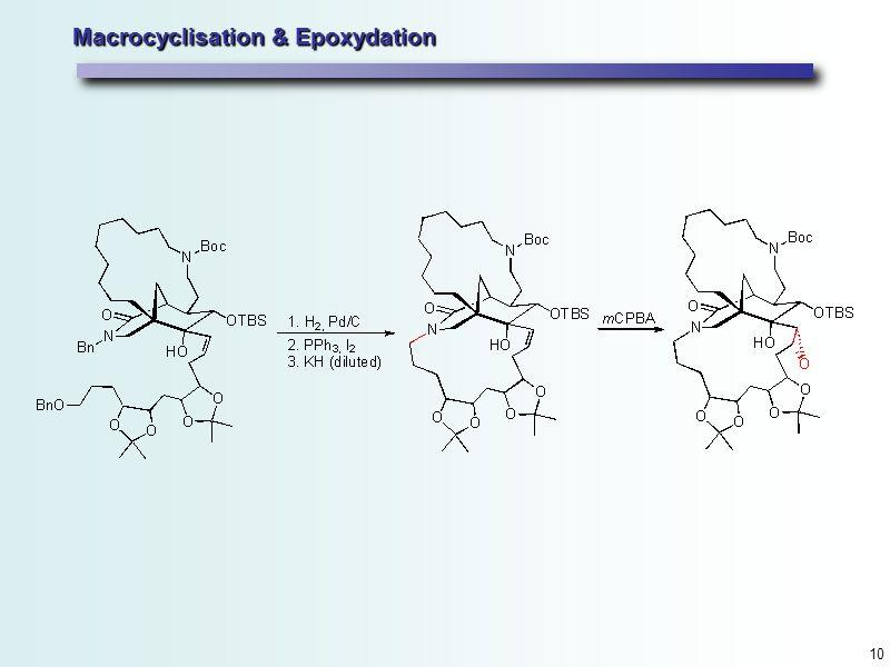 10 Macrocyclisation & Epoxydation