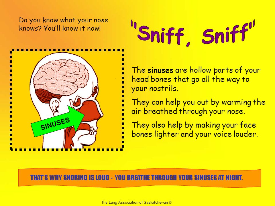 Do you know what your nose knows.You'll know it now.