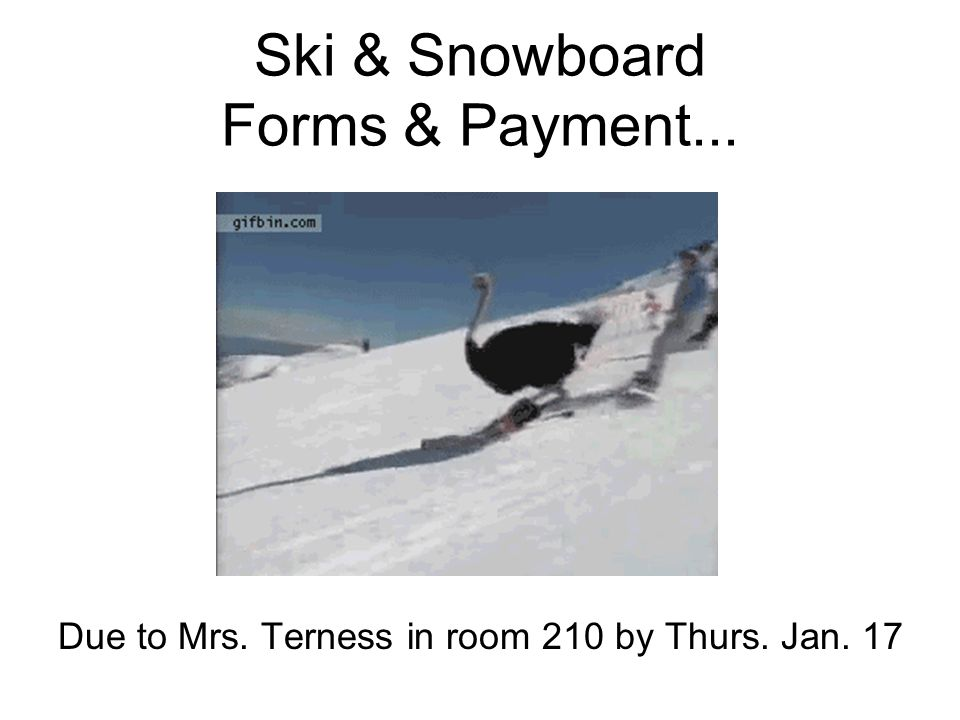 Ski & Snowboard Forms & Payment... Due to Mrs. Terness in room 210 by Thurs. Jan. 17