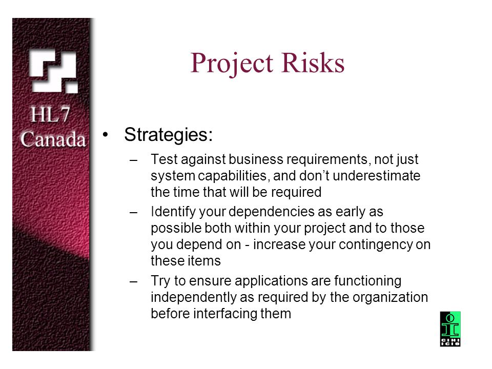 Project Risks Strategies: –Test against business requirements, not just system capabilities, and don't underestimate the time that will be required –I