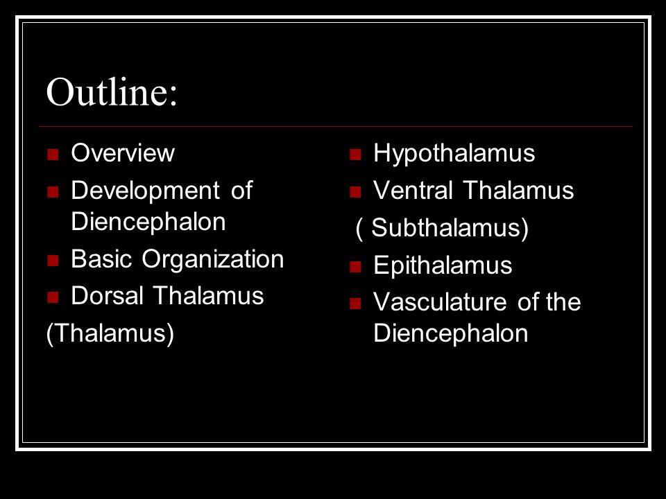 Outline: Overview Development of Diencephalon Basic Organization Dorsal Thalamus (Thalamus) Hypothalamus Ventral Thalamus ( Subthalamus) Epithalamus V
