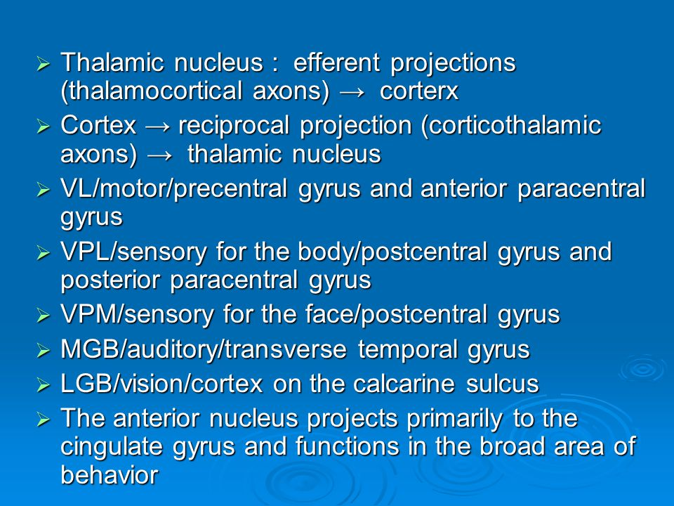  Thalamic nucleus : efferent projections (thalamocortical axons) → corterx  Cortex → reciprocal projection (corticothalamic axons) → thalamic nucleu