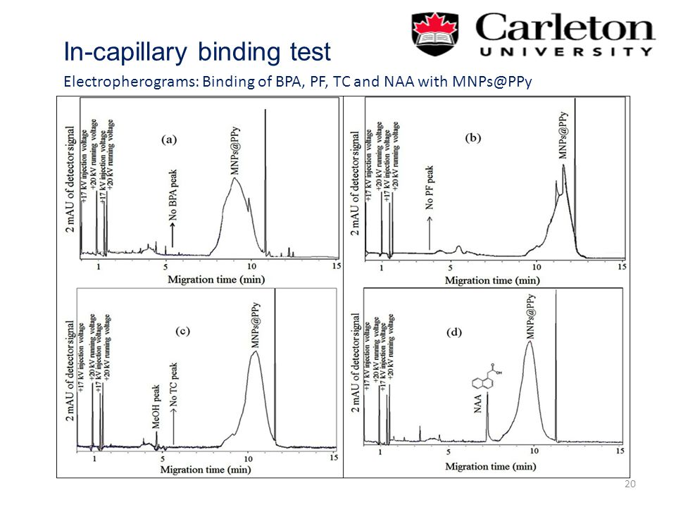 In-capillary binding test 20 Electropherograms: Binding of BPA, PF, TC and NAA with MNPs@PPy