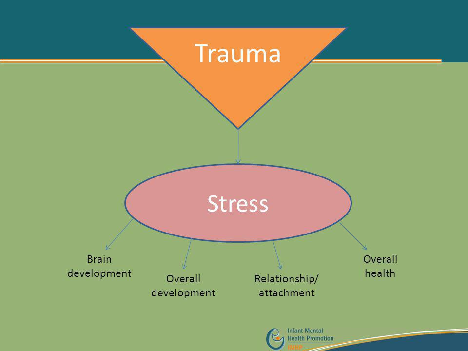 Trauma Stress Brain development Overall development Relationship/ attachment Overall health