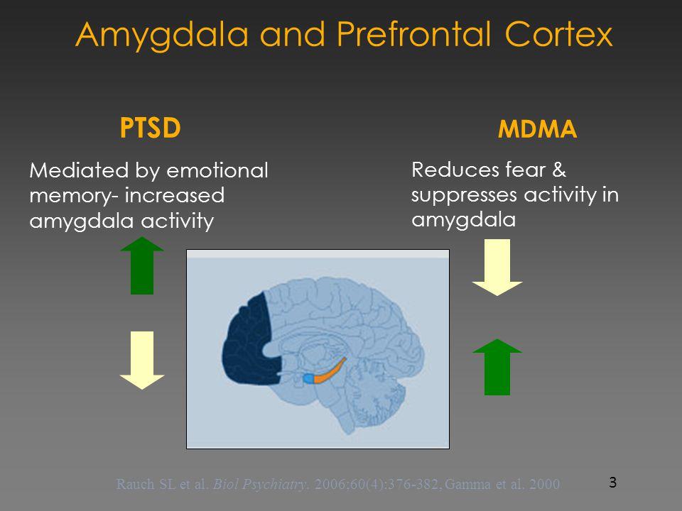 Amygdala and Prefrontal Cortex PTSD Mediated by emotional memory- increased amygdala activity Decreased activity in prefrontal cortex- Thought Center