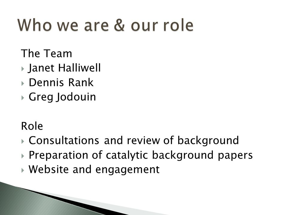 The Team  Janet Halliwell  Dennis Rank  Greg Jodouin Role  Consultations and review of background  Preparation of catalytic background papers  Website and engagement