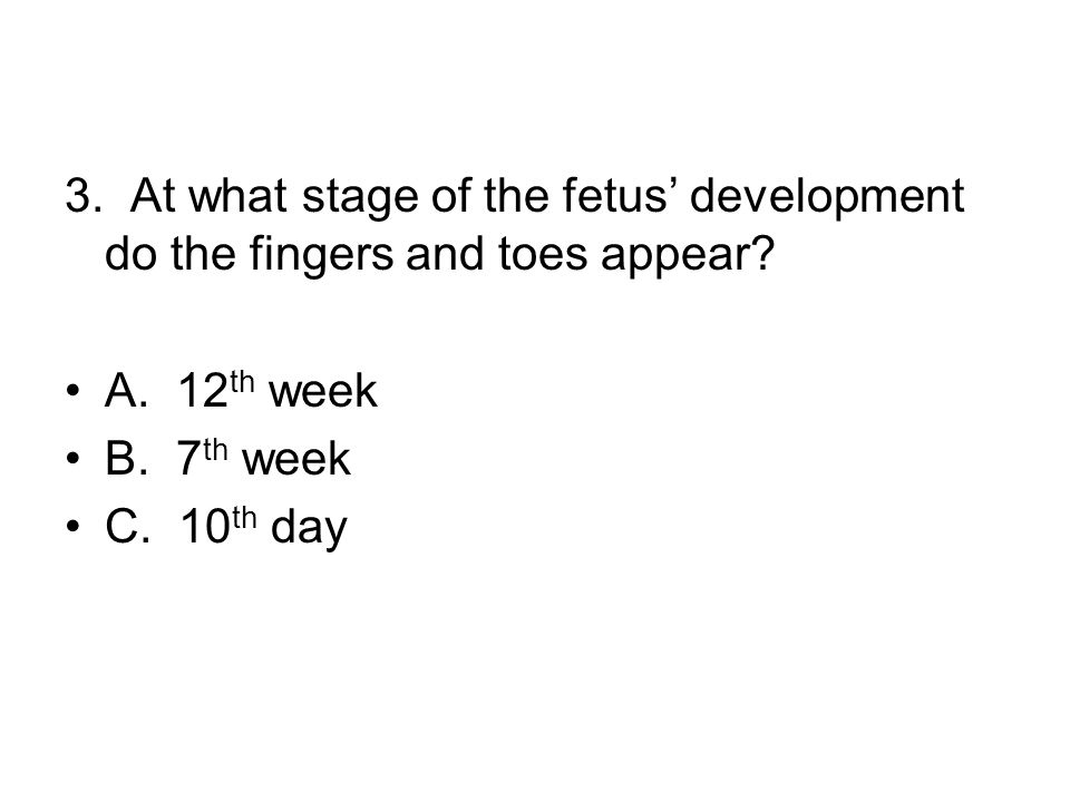 3. At what stage of the fetus' development do the fingers and toes appear.