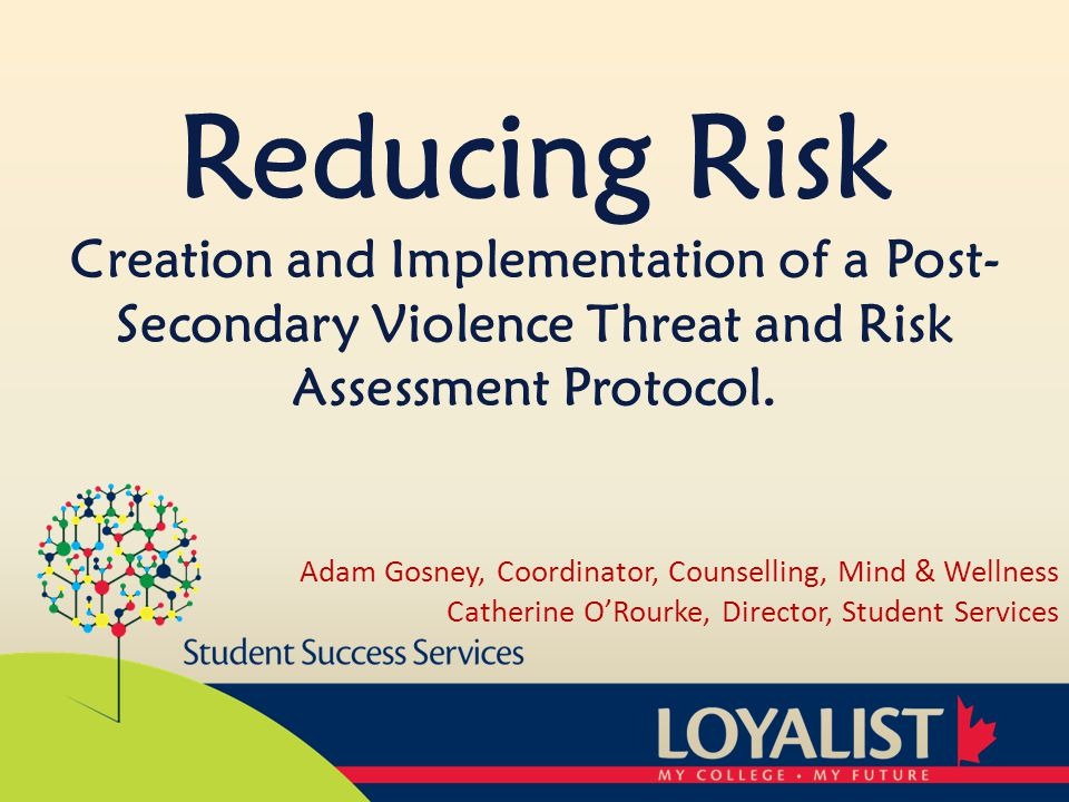 Student Intervention Plan Outlines the activities the student of concern will participate in as part of the risk reducing intervention.