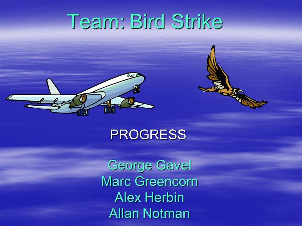 George Gavel Marc Greencorn Alex Herbin Allan Notman PROGRESS Team: Bird Strike