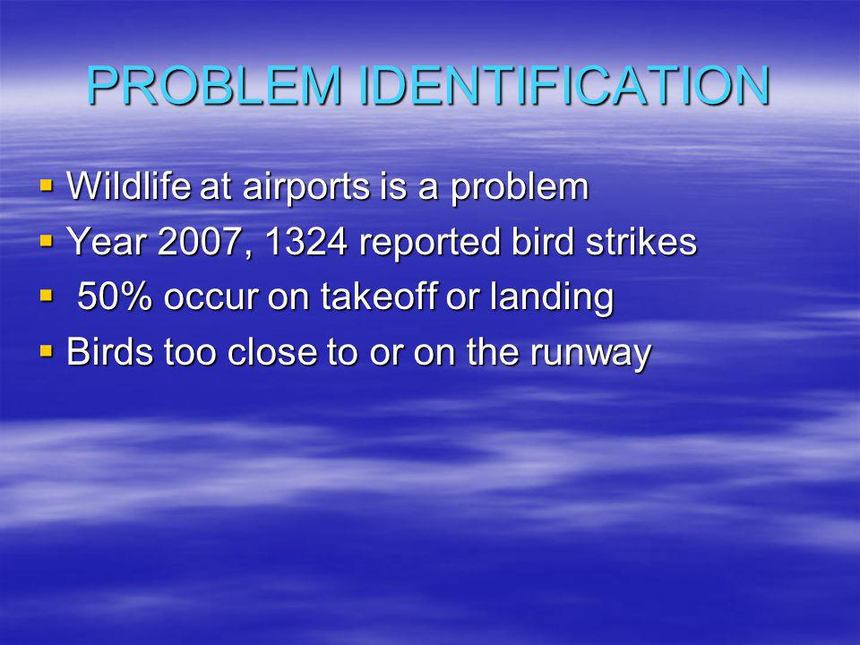 PROBLEM IDENTIFICATION  Wildlife at airports is a problem  Year 2007, 1324 reported bird strikes  50% occur on takeoff or landing  Birds too close to or on the runway
