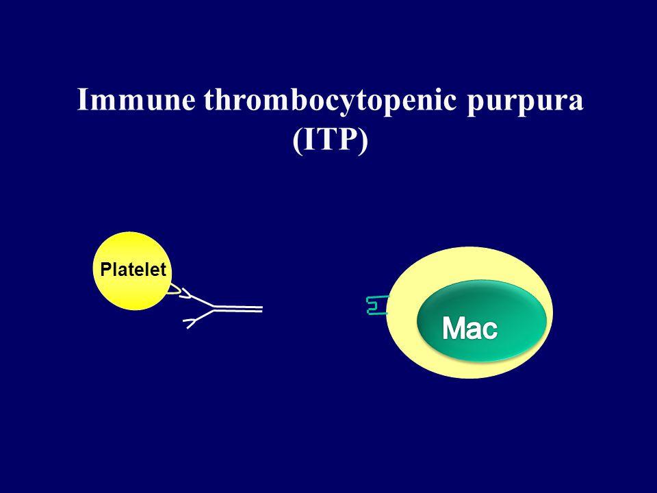 Immune thrombocytopenic purpura (ITP) Platelet