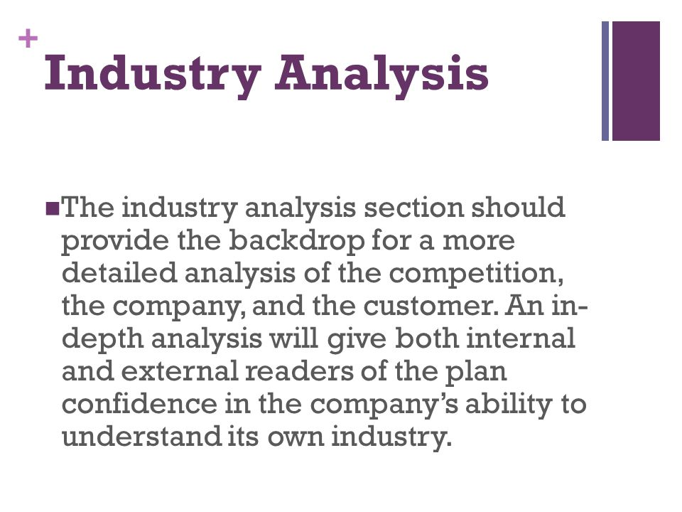 + Industry Analysis The industry analysis section should provide the backdrop for a more detailed analysis of the competition, the company, and the cu