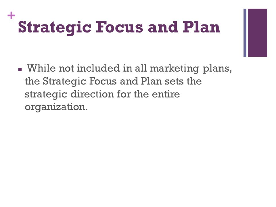 + Strategic Focus and Plan While not included in all marketing plans, the Strategic Focus and Plan sets the strategic direction for the entire organiz