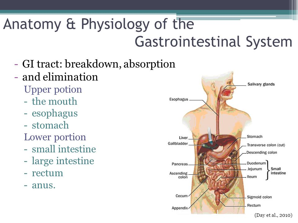 Inflammatory Bowel Disease IBD refers to two chronic inflammatory GI disorders: Crohn's disease and Ulcerative Colitis, both cause inflammation and ulcerations of the intestine.