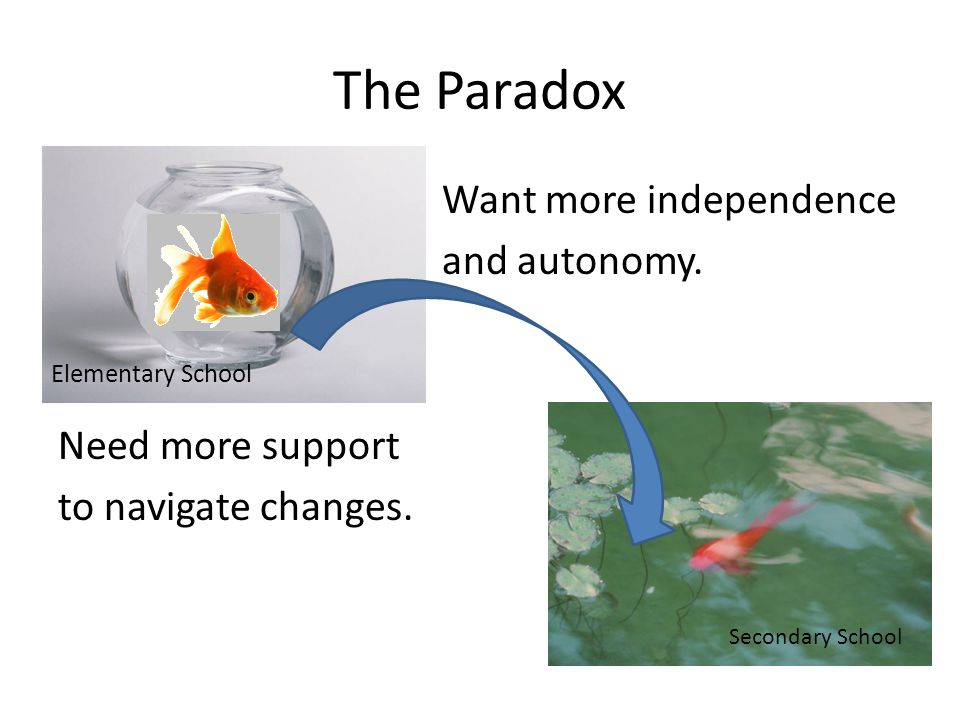 The Paradox Want more independence and autonomy. Need more support to navigate changes.
