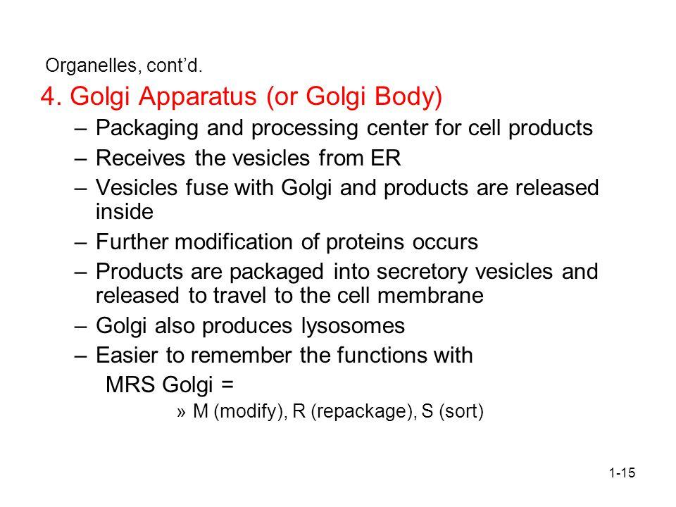 1-15 Organelles, cont'd.4.