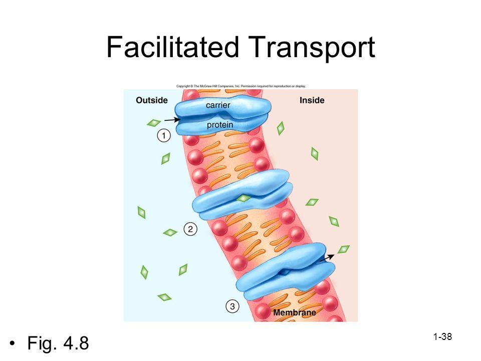 1-38 Facilitated Transport Fig. 4.8